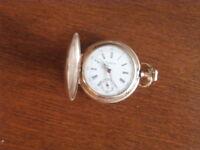 Tempus watch