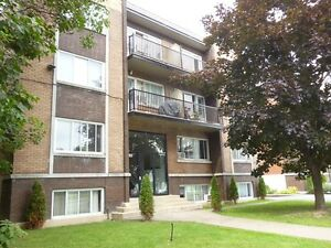 DORVAL - GRAND 3 1/2 - A 775$/MOIS - SEPTEMBRE