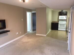 Large Clean One Bedroom Executive Apartment For Rent