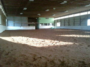 horse boarding, lessons and training