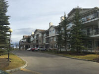 ONE BEDROOM FULLY FURNISHED CONDO IN  Arbour Lake NW