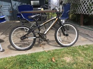 Kids Free Agent all aluminum BMX bike