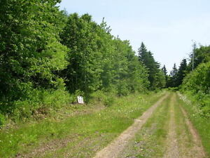 PRICE DROP / Secluded lot near waterways; rent-to-own option