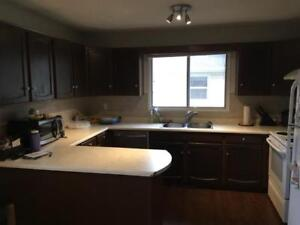 2 Bedroom Suite - close to University and Whyte(82) Ave