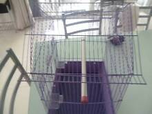 BRAND NEW SMALL BIRD CAGE WITH FEED AND WATER DISHES Amaroo Gungahlin Area Preview