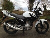 Yamaha YBR 125 motorcycle MOT January 2019, 13337 miles, service history, one previous owner