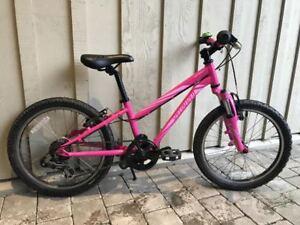Specialized Hot Rock 20 Kids Mountain Bike