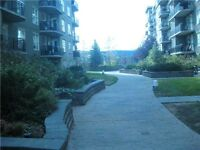 Clareview Court
