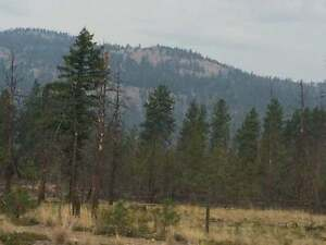 76 Acres of land for sale in Merritt