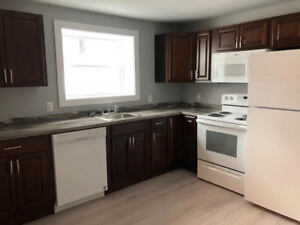 RENOVATED ONE BEDROOM APARTMENT NEAR QUINPOOL, DAL, AND IWK!
