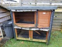 Hutch - Rabbit or Guinea pig. Lots of extras inc Animal Carry Case, food, bedding clippers.