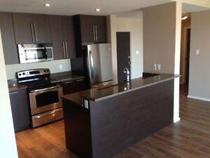 Must See 2 bedroom apartment - Luxury one