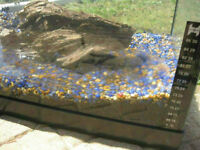 20 Gal fish tank (attached thermometer/light/gravel/driftwood...