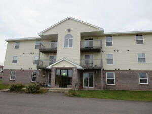 Wallace Living- All Inclusive Apartment for Rent - 319 Young St.