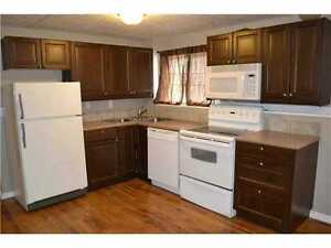 Bright, clean, updated 1br+den. Central area. Utilities Incl.