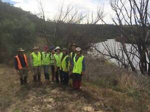 Volunteer to plant trees near an iconic river Turner North Canberra Preview