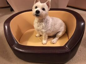 Dog's Faux Leather Bed
