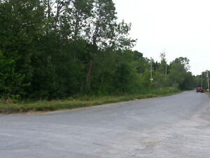 4.7 ACRES IN THE HAMLET OF ROSEDALE Kawartha Lakes Peterborough Area image 1