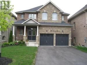 705 Emily Grve Newmarket Ontario Must see  house!