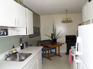 Catalina Court Apartments - 1 Bedroom Apartment for Rent...
