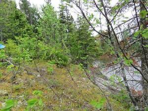 Grand terrain rue des Rossignols Saguenay Saguenay-Lac-Saint-Jean image 16