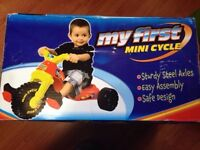 Toddlers 1st tricycle