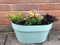 Green wall planter