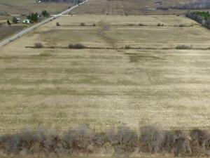 Appx. 51 Acres In Caledon