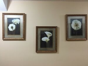 Set of 3 Floral Wall Art paintings
