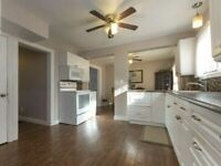 New Renovated house with 6 Bedrooms all above ground for Rent