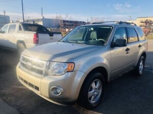 2010 Ford Escape XLT 4WD (6 MTH WARRANTY)(CARPROOF)(ONE OWNER)