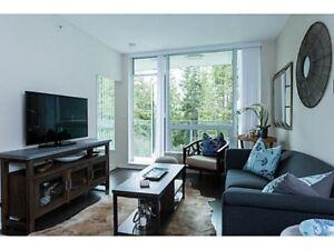 Furnished Luxury Condo in UBC