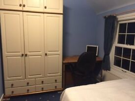 Double room in lovely secluded house, Alton town centre, parking & 6min walk from station