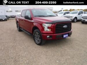 2015 Ford F-150 XLT Sport SuperCrew 4x4