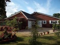 THE TREES - ONE BEDROOM -SELF CATERING -HOLIDAY APPARTMENT - VERWOOD DORSET