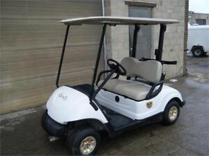 2009 Yamaha Drive - Build your Own Custom Cart!