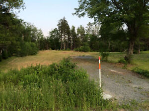 THIS LOT IS READY! CLEARED, DRIVEWAY AND PRICED TO SELL!