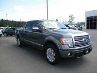 2010 Ford F-150 Platinum Supercrew 4x4