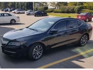 SHORT TERM LOW KM LEASE - 2015 Acura TLX V6 Elite 3.5L SH-AWD