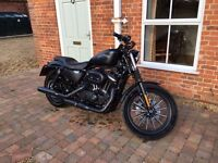 Harley Davidson Sportster XL883N