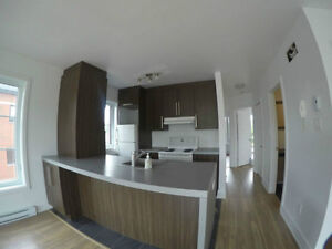 Beautiful Spacious 2 Bedroom For Rent, 16641 Pierrefonds West Island Greater Montréal image 3