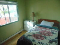 Nice and Cozy furnished Room Available - Chambre a louer