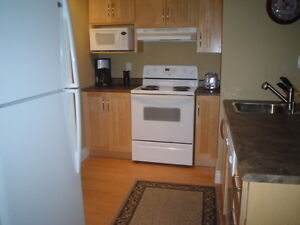 Walk to Mile One! Heart of downtown fully furnished one-bedroom!