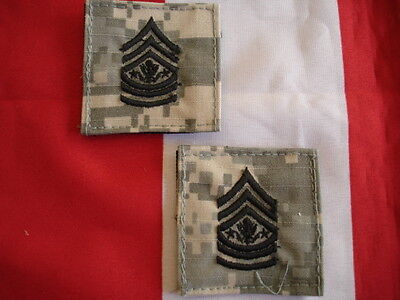 ACU Army Rank SMA New Embroidered Set of 2 Hook Backing 2 X 2