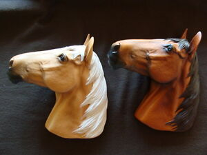 bosson horse heads