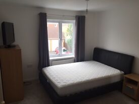 DOUBLE BEDROOM TO RENT EMERSONS GREEN