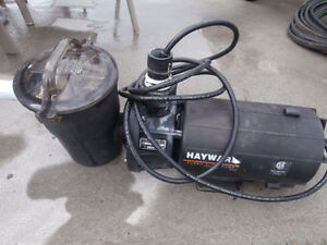 one working spa motor $55 and a Hayward pool motor $95  one fil