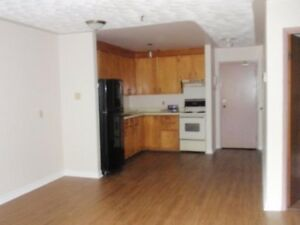 Central Halifax Large 1 Bedroom with 1 Parking