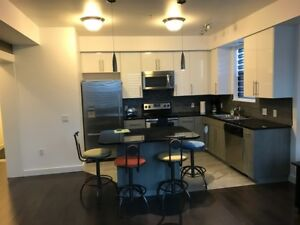 Executive Downtown Condo Ideal for Short Term Stay
