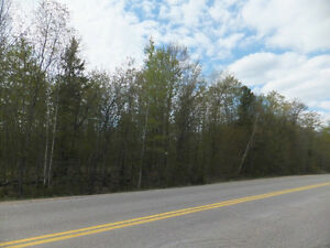 POWER OF SALE: 2.9 Acres Estate in Haliburton - $2K down